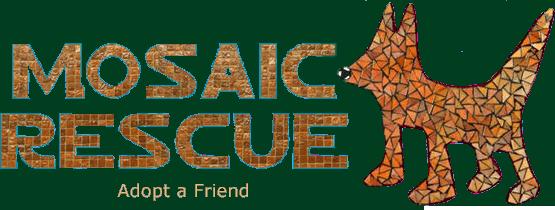 Mosaic Rescue